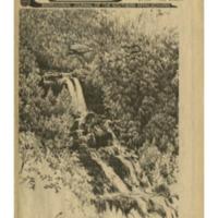 Katúah: Bioregional Journal of the Southern Appalachians, Issue 4, Summer 1984