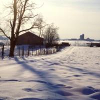 Shenandoah Landscape c1977