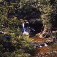 Saint Mary's River Falls VA c1972