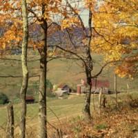 Shenandoah Valley VA 4 c1975