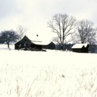 Old Homestead N.of Appomattox, Va c1978