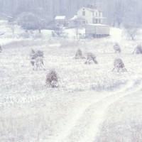 Snow Storm Shenandoah Valley, VA  1977