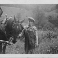 Boy Standing with Two Yoked Horses - Handwritten: Harry Jr ab 1923